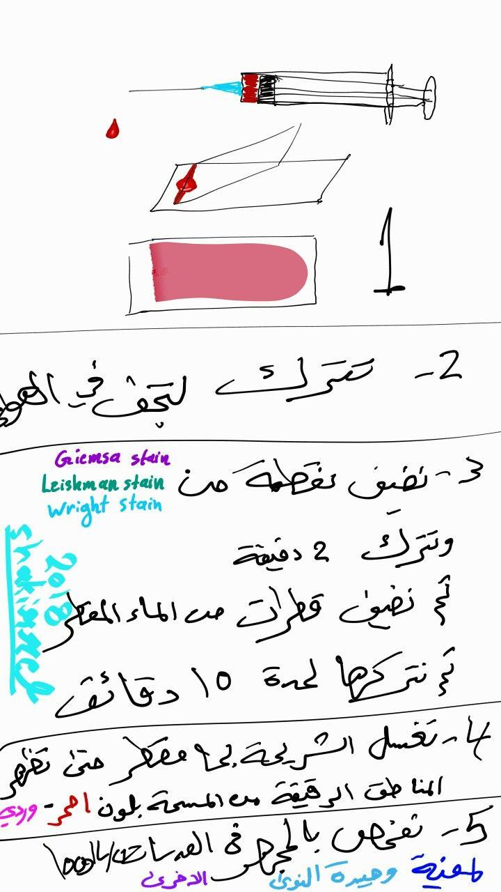 Leukocyte In Slide تحير مسحة خلايا الدم البيضاء Math Stain Math Equations