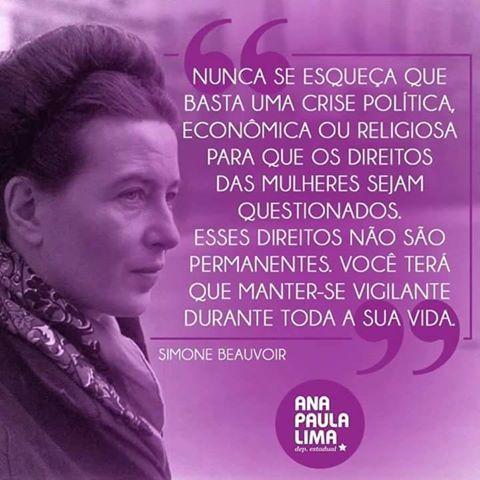 """Para Além do Cérebro: Simone de Beauvoir sobre os oportunistas-golpistas-opressores contra as mulheres, bem o retrato do """"desgoverno"""" Temer"""
