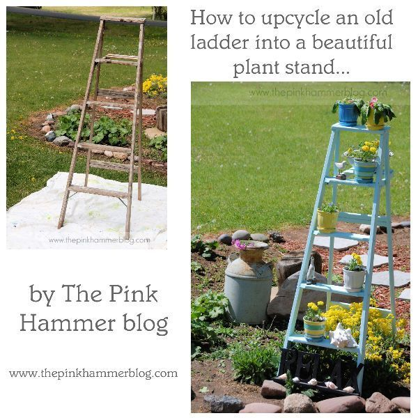 Upcycle Old Ladder Into Beautiful Plant Stand