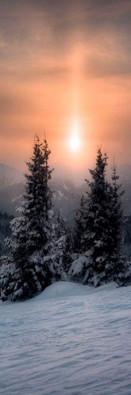 Soleil d'Hiver -