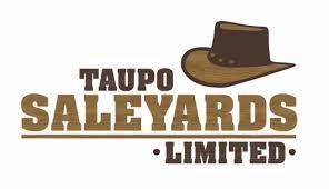 Resultado de imagen para cowboy hat logo