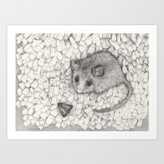 Australian Wildlife Art | Gundaroo | Shelley Richardson