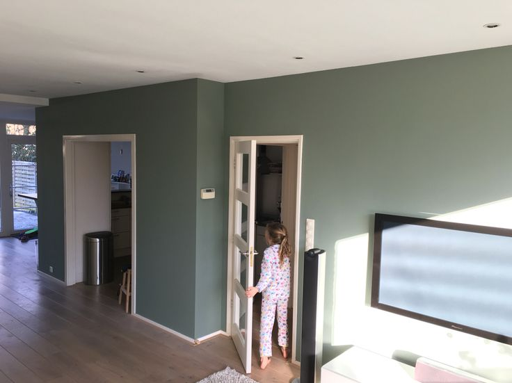 Best Card Room Green Paint Farrow And Ball Images On - Calke green farrow and ball