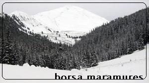 The Rodna Mountains have one of the longest continuous ridges in Romania, with over 50 km from west to east. The two highest points are Pietrosul Rodnei and Ineu peaks, with 2,303 and 2,279 meters respectively.    The mountains are most suited for hiking in summer and skiing in winter, and are especially famous for having snow late into the summer months (skiing is possible well into June, sometimes even July).