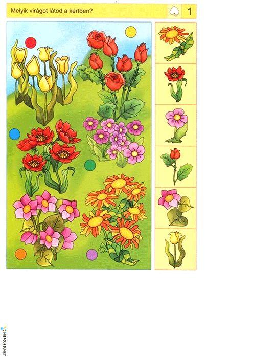 тематическая неделя лето цветы