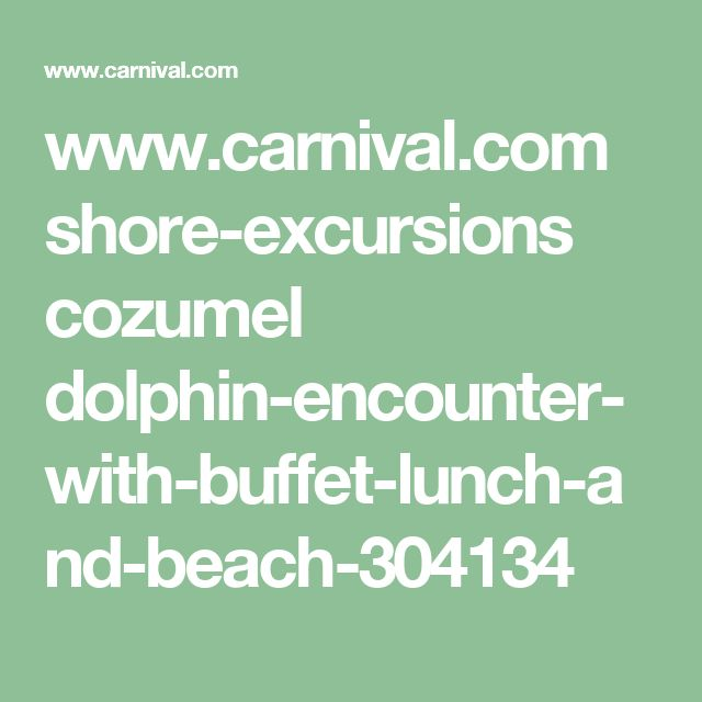 www.carnival.com shore-excursions cozumel dolphin-encounter-with-buffet-lunch-and-beach-304134