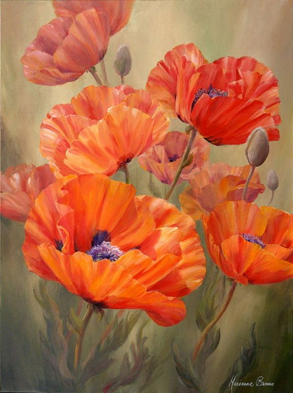 303 best Poppies - Klaprozen images on Pinterest | Poppies ...
