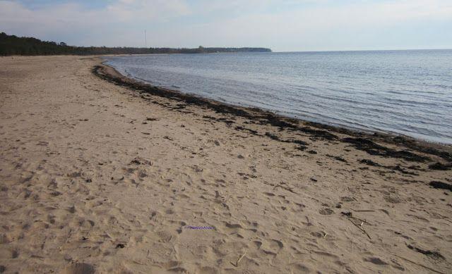 Beach on the way to Madona in Latvia