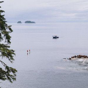 Exploring the Broughton Archipelago - Nimmo Bay Resort BC Canada
