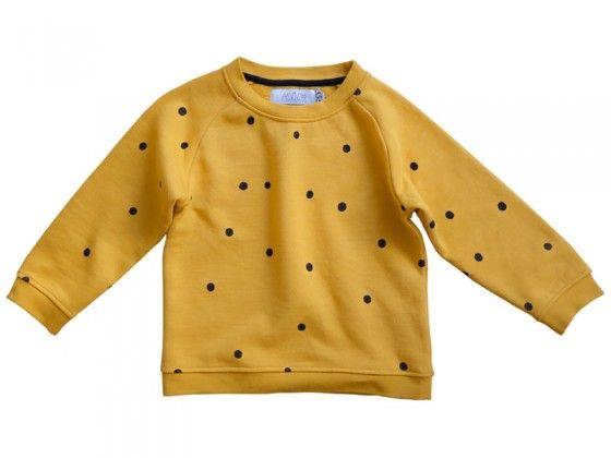 Lion Dot Sweatshirt