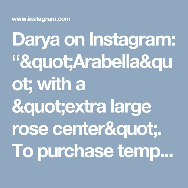 """Darya on Instagram: """"""""Arabella"""" with a """"extra large rose center"""". To purchase template, link is in my bio. #paperflowerbackdrop #backdrops #paperrose…"""""""