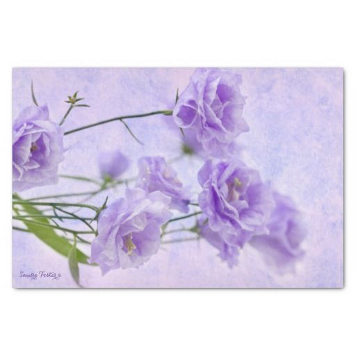 "Purple Campanella Flowers Macro 10"" X 15"" Tissue Paper"