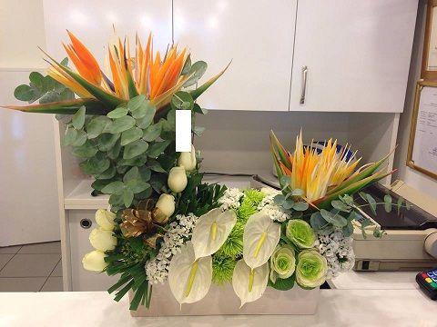 doğum günü çiçek gönder çiçek buketi gönder,  çiçek gönder pendik,  maltepe çiçek gönder,  saksı çiçek gönder,  çiçek siparişi istanbul,  istanbul çiçek siparişi,  online çiçek siparişi istanbul,  istanbul çiçek,  istanbul çiçek sipariş,  istanbul çiçek gönder çiçek istanbul,  çiçek gönder istanbul,  çiçek mezatı istanbul,  cicek yolla istanbul yapay çiçek istanbul,  çiçek gönderme istanbul,  yapay çiçek fiyatları buket çiçek fiyatları/
