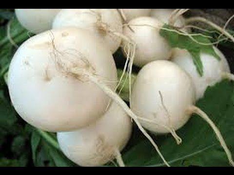 Health Benefits of Turnip - Turnip Benefits