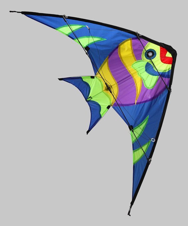 Look what I found on #zulily! Blue Tropical Fish Stunt Kite by Gayla #zulilyfinds