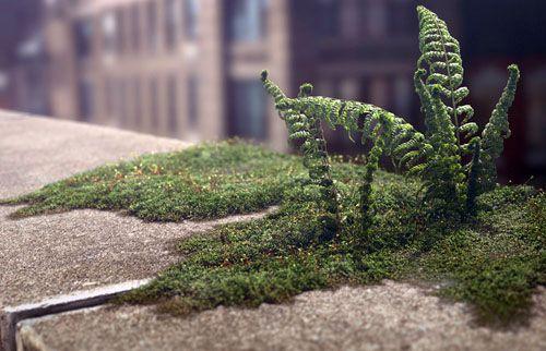ニューヨークを背景に強力な生命力を持った植物のエネルギーを描く美しく衝撃的なアニメーションタイムラプス。人は未来をネガティブに描きたがるのはなぜか?