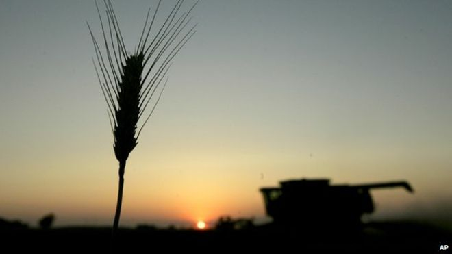 Open data aims to boost food security prospects