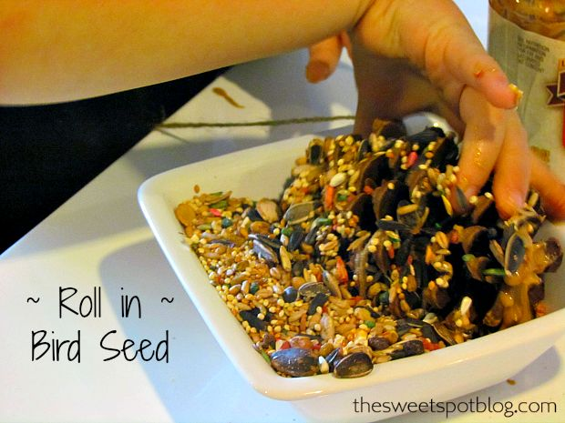 Birds tend to need additional food this time of year, so we decided to help them out. These pinecone bird feeders are a great craft project for small kids