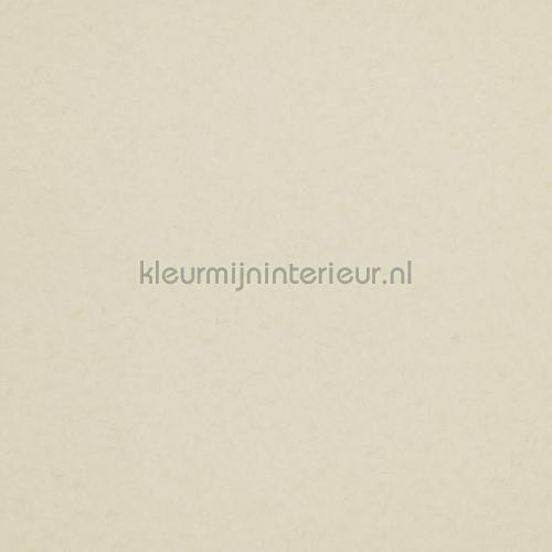 Behang 218318 uit de collectie Glassy van BN Wallcoverings online bestellen bij kleurmijninterieur