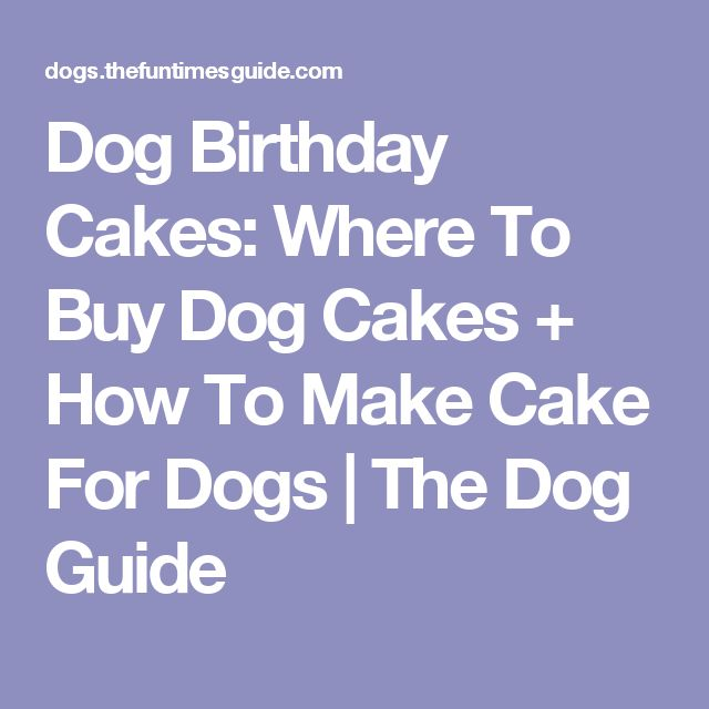 Dog Birthday Cakes: Where To Buy Dog Cakes + How To Make Cake For Dogs | The Dog Guide