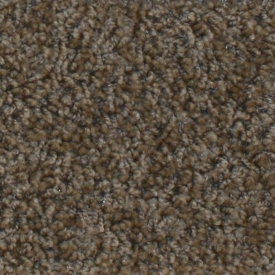 This carpet sorta matches the drapes in my house. I've been thinking about installing it myself: Dining Room, Living Room