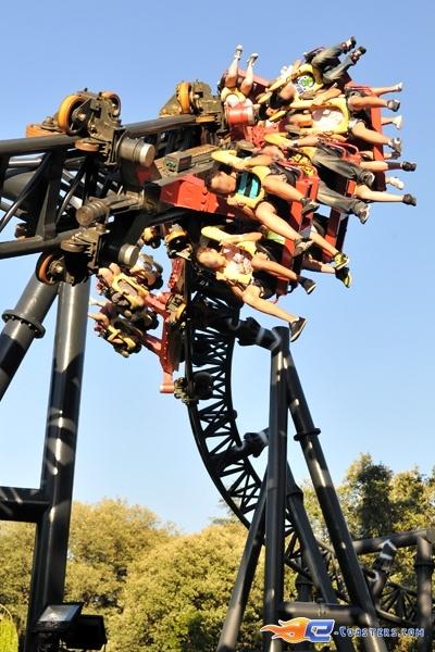 1036 best roller coasters images on pinterest rollers Roller adresse