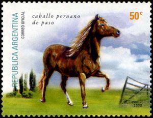 Caballo Peruano de Paso (Equus ferus caballus)