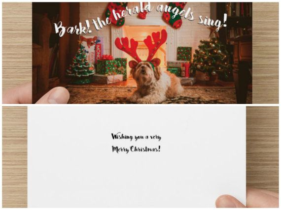 "The Frumpy Dog Christmas Card: ""Bark! The herald angels sing! Wishing you a very Merry Christmas"""