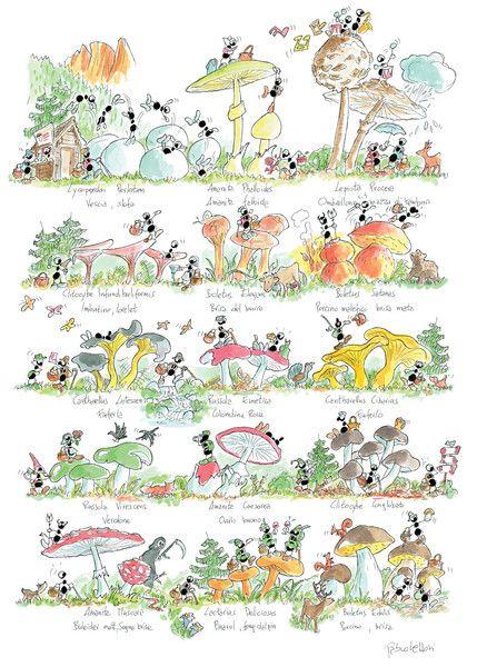 """Puzzle """"Funghi"""". #formiche #puzzle #funghi #natura"""