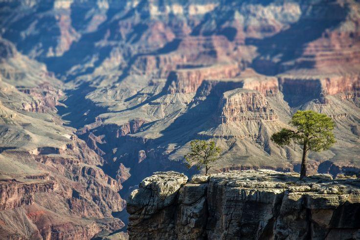 Tweets leuk gevonden door Grand Canyon NPS (@GrandCanyonNPS) | Twitter
