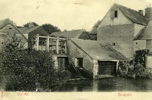 Old Mill, Bridport - Images & Documents