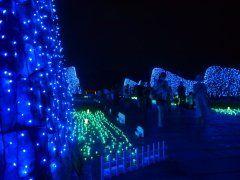 まんのう公園のサマーナイトフェスティバルが今年も香川県まんのう町のまんのう公園あるみたいだね 夏だけどイルミネーションが楽しめて昇竜の滝もライトアップされるよ 花火ショーにパフォーマンスショーなどのワクワクイベントも沢山 家族で行くのもいいしカップルで行っても楽しめるイベントだよ(ˊᗜˋ)و  #香川 #イベント #まんのう公園 #イルミネーション #花火 tags[香川県]