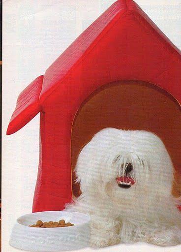 ARTESANATO COM QUIANE - Paps,Moldes,E.V.A,Feltro,Costuras,Fofuchas 3D: Faça e venda: Casinha de Cachorro com molde