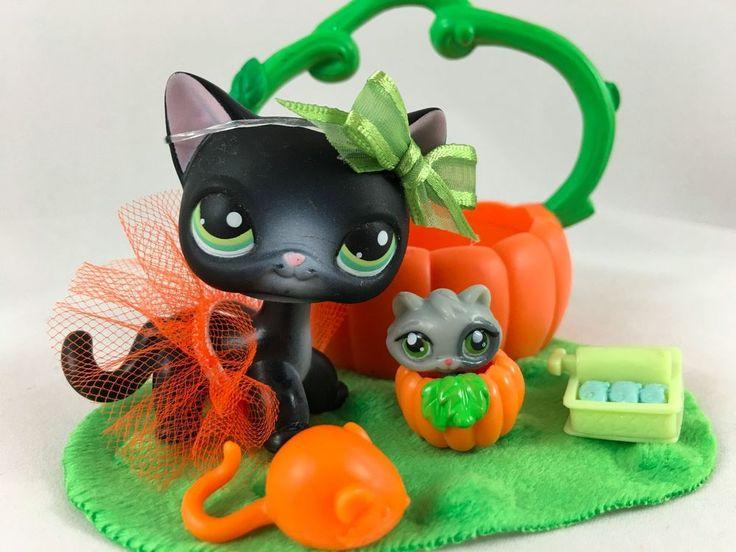 Littlest Pet Shop RARE Black Cat #336 w/Tutu Pumpkin Carrier Teensie Accessories #Hasbro
