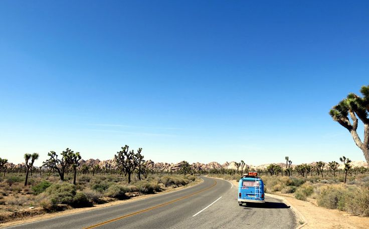 road-trips-travel-tips-usa