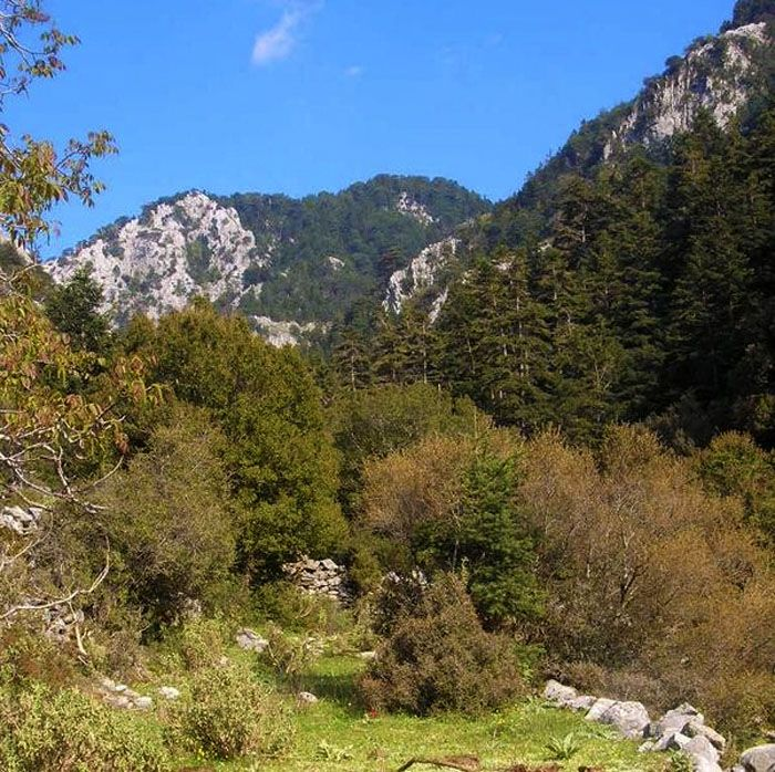 Το μυστικό του Ταΰγετου: Τι κρύβει το πανέμορφο βουνό | ManiVoice Greece