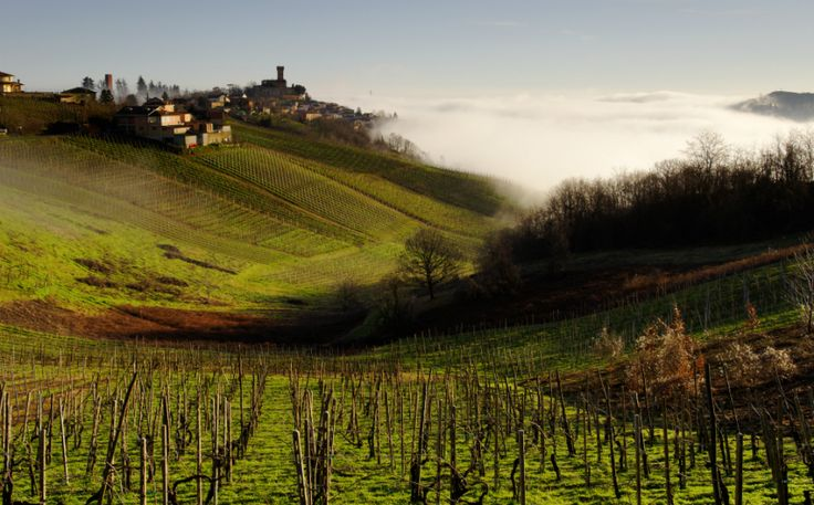 It is famous for its sparkling wines