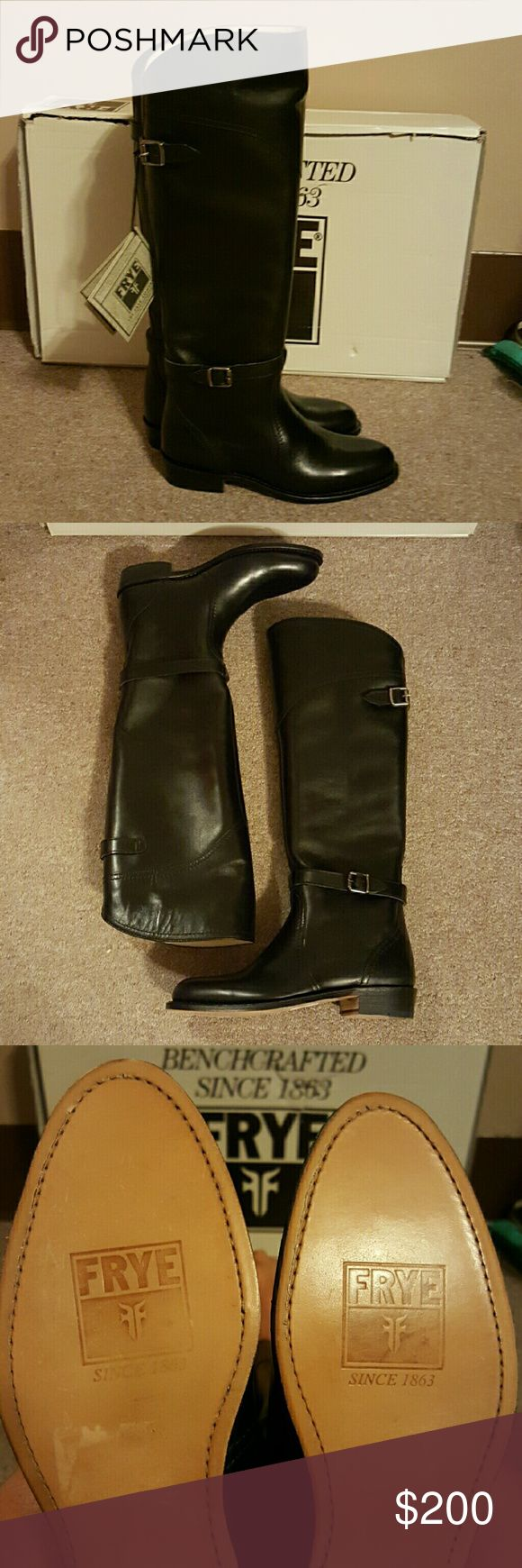 Brand New Frye Riding boots NWT Frye riding boots. Leather. Never worn. One size too small. Frye Shoes Winter & Rain Boots