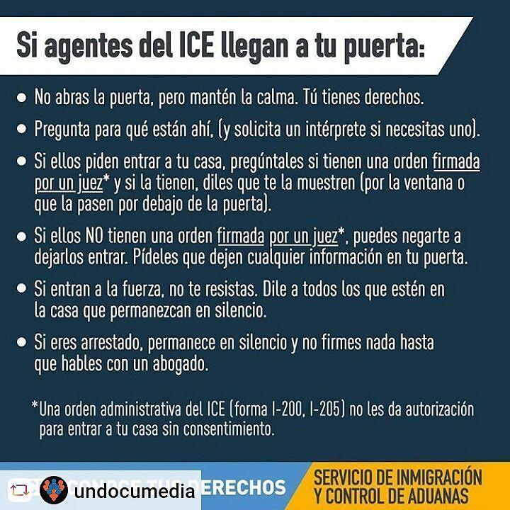 #undocumentedunafraid #undocumentedandunafraid #Rensta #Repost: @undocumedia via @renstapp   Se habla español  #yatusabes  Entiendes mendez o te explico federico #LaLuchaSigue pero el pueblo unido jamas sera vencido #HereToStay  #inmigracion