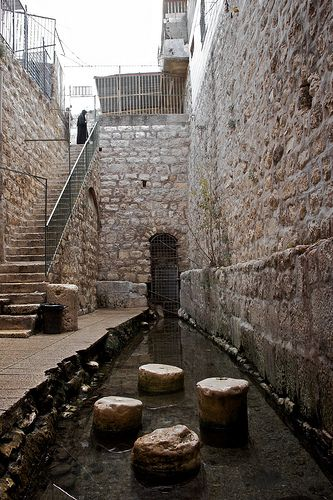 Visit the Pool of Siloam where Jesus healed the blind man.