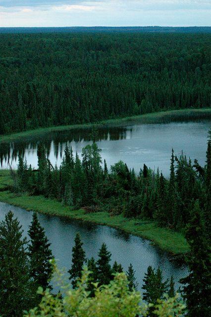 Narrow Hills Provincial Park in Saskatchewan Canada (pinned by redwoodclassics.net)