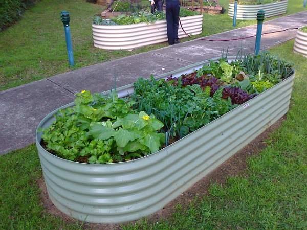 All Hallows Parish Community Garden - blogspot