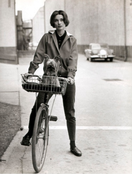 Audrey Hepburn and a yorkie in tow. Such a sweet, classic image.