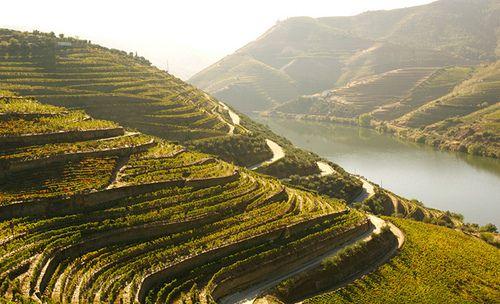 Douro Valley, Portugal - Entidade Regional do Turismo do Douro CC BY-NC-ND