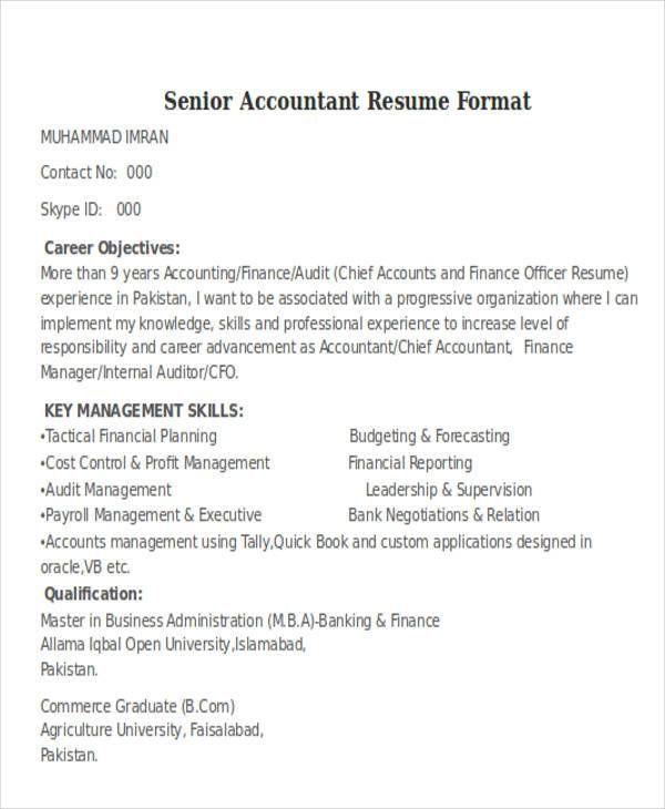 senior auditor resume