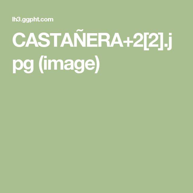 CASTAÑERA+2[2].jpg (image)