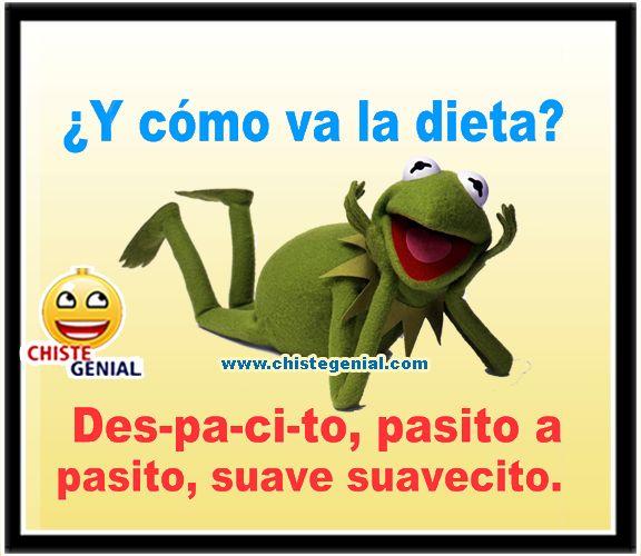 Y Como Va La Dieta Des Pa Ci To Pasito A Pasito Suave Suavecito Los Mejores Chistes Cortos Buenos Y Divertidos Humor Funny Memes