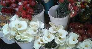 The absolutely fabulous Dunkeld Fruit and Flowers market is truly Joburg - pay them a visit today!