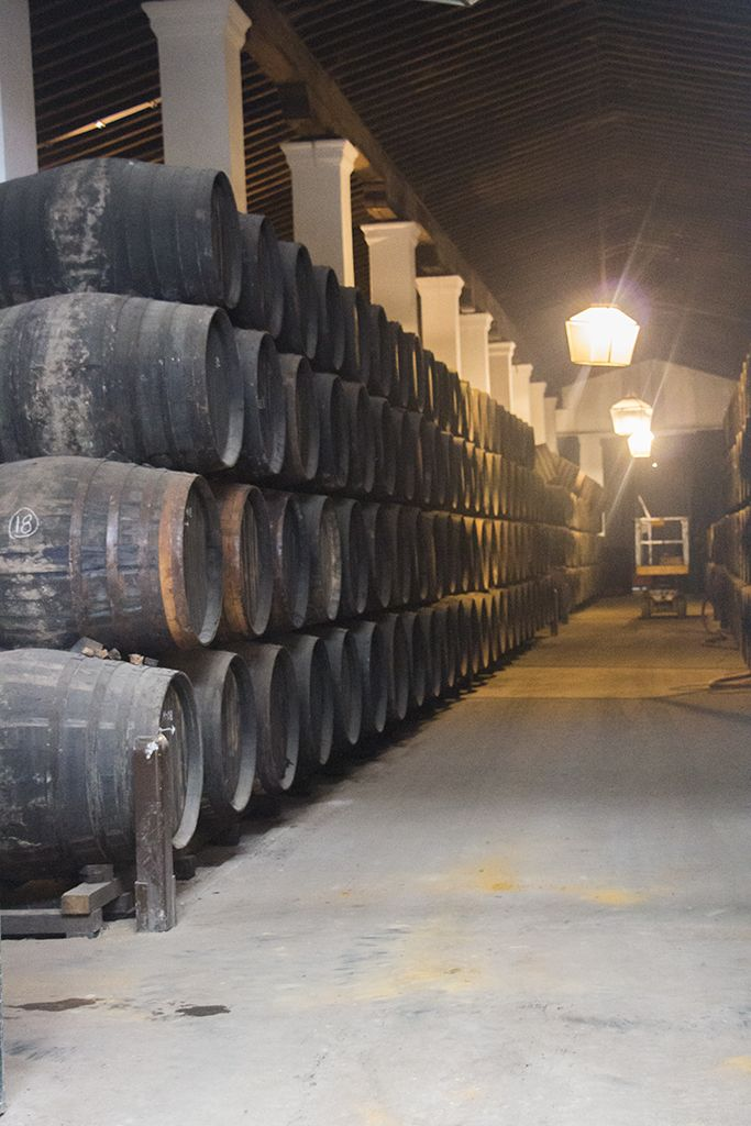 Jerez de la Frontera is famous for its bodegas. Take a walk in one of them. Enjoy what Tio Pepe has to offer.  http://theonewhodo.es/andalucia/introduction-to-jerez-de-la-frontera/