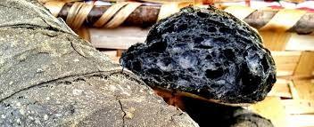 Risultati immagini per carbone vegetale in polvere